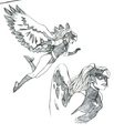 Falconette sketch