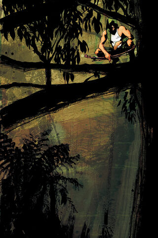 File:Green Arrow Year One Vol 1 2 Textless.jpg