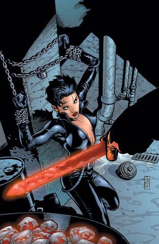 File:Catwoman 0054.jpg