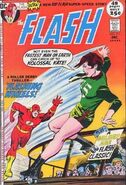 The Flash Vol 1 211