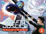 Young Justice: Outsiders Vol 1 2 (Digital)