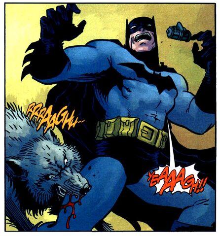File:Batman 0597.jpg