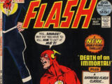 The Flash Vol 1 215