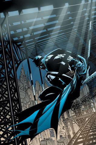 File:Batman Dick Grayson 0012.jpg