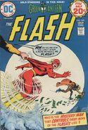 The Flash Vol 1 228