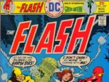 The Flash Vol 1 237