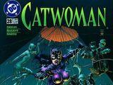 Catwoman Vol 2 28