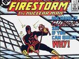 Firestorm Vol 2 28