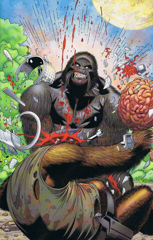 File:Mallah Brain Death.jpg