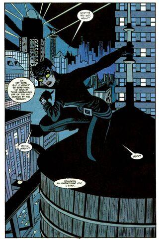 File:Catwoman 0056.jpg