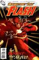 The Flash Vol 3 002 Sook Variant