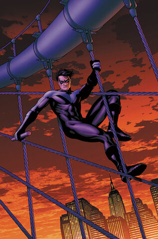 File:Nightwing 0021.jpg