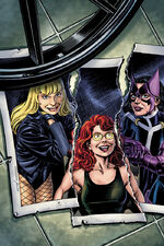 The Birds of Prey split up