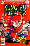 Richard Dragon Kung-Fu Fighter Vol 1 13