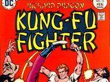 Richard Dragon, Kung-Fu Fighter Vol 1 13