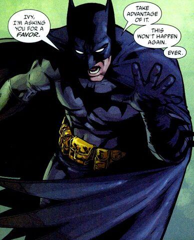 File:Batman 0303.jpg