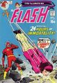 The Flash Vol 1 206