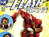 The Flash 80-Page Giant Vol 1 1