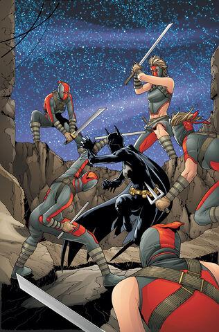File:Batgirl Cassandra Cain 0036.jpg