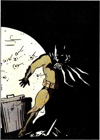 File:Batman 0281.jpg