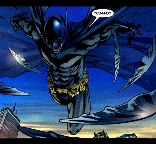 File:Batman 0288.jpg