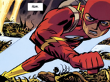 Barry Allen (Earth-21)