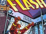The Flash Vol 2 89