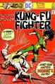 Richard Dragon Kung-Fu Fighter Vol 1 5