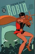Robin Year One 4