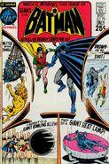 Batman 228