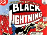 Black Lightning Vol 1 2