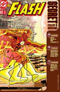 The Flash Secret Files and Origins 3