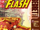 The Flash Secret Files and Origins Vol 1 3