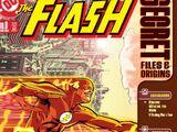 The Flash Secret Files and Origins Vol 1 3