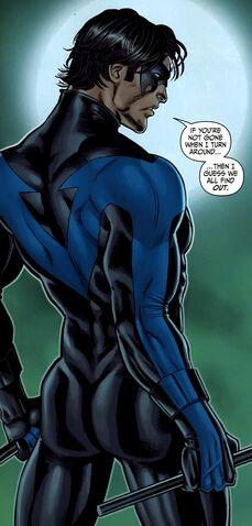 File:Nightwing 0085.jpg