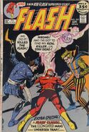 The Flash Vol 1 209