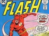 The Flash Vol 1 245