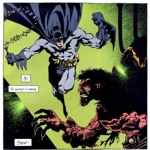 File:Batman 0427.jpg