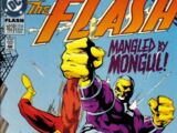 The Flash Vol 2 102