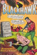 Blackhawk Vol 1 206