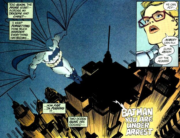 File:Batman Earth-31 018.jpg