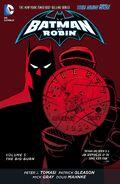 Batman and Robin The Big Burn