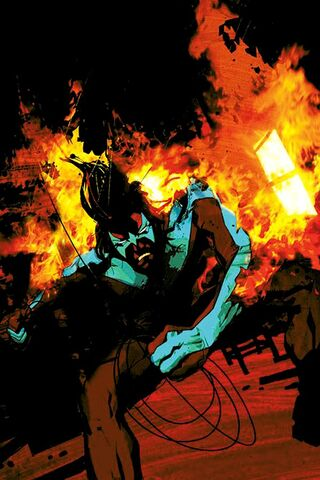 File:Nightwing 0077.jpg
