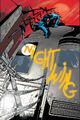 Nightwing 0055