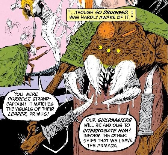 File:Spider Guild 001.jpg