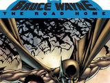 Batman: Bruce Wayne - The Road Home (Collected)
