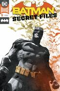 Batman Secret Files Vol 1 1