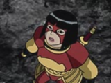 Tatsu Yamashiro (Superman/Batman)