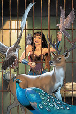 Diana is visited by the Gods of Olympus in their animal forms, who bestow upon her great powers