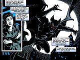 Bruce Wayne (Curse of the Cat-Woman)